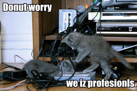 donut-worry-we-iz-profesion.jpg